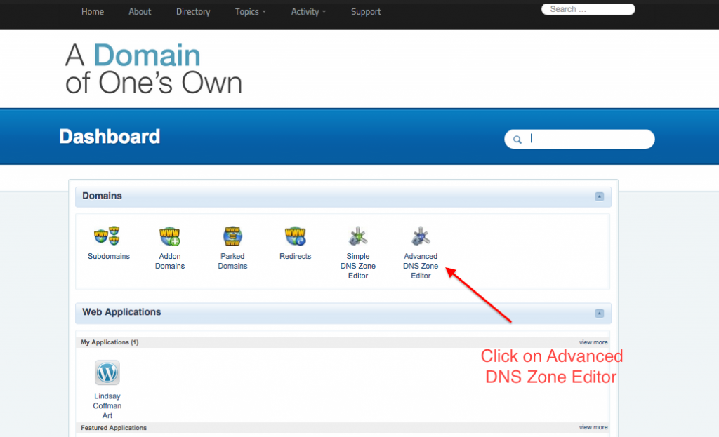 advanced_DNS_zone_editor